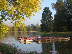 Photo de [Interview] 1er Marathon du bois de Vincennes et des bords de Marne