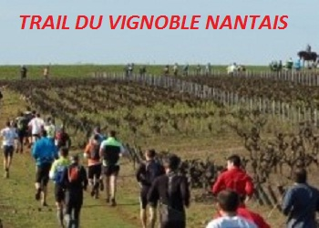 Trail du Vignoble Nantais