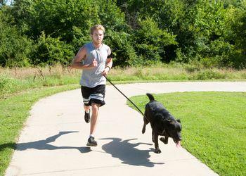 Le canicross, ou courir avec son chien