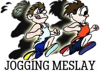Semi-marathon Courir à Meslay
