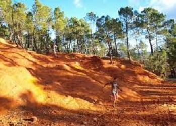 Trail TerraVentoux Ocres et Limons