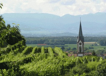 Course internationale du Kaiserstuhl