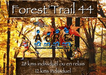 Forest Trail 44