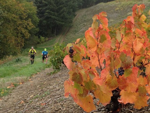 Ultra Beaujolais Villages Trail