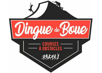 Dingue de Boue