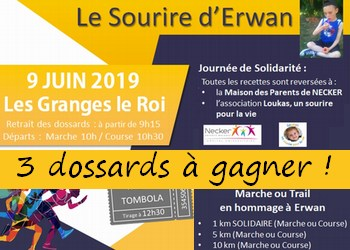 3 dossards 5 & 10 km Sourire d Erwan 2019 (Essonne)