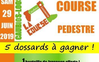 5 dossards Course La Caubios-Loosienne 2019 (Pyrénées Atlantiques)