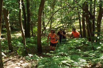 Photo de TSY – Le Trail des Sources de l'Yvette 2020, Lévis-Saint-Nom (Yvelines)