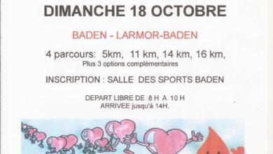 Photo de Marche des Globules 2020, Baden (Morbihan)