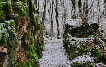 Trail des Chevaliers